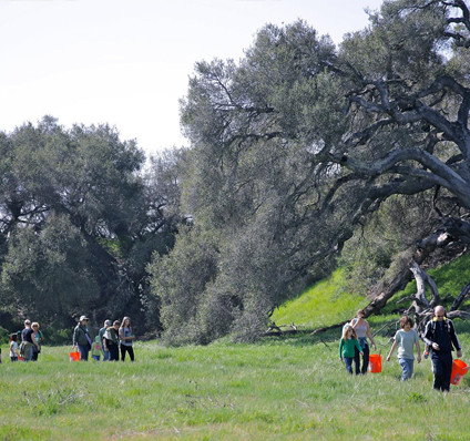Activities at the Reserve